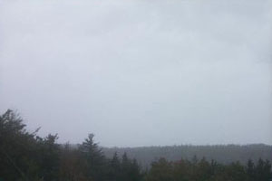 Acadia: Foggy Day