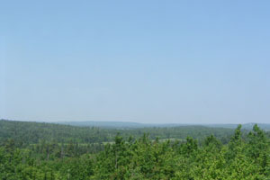 Moosehorn: Hazy Polluted Day
