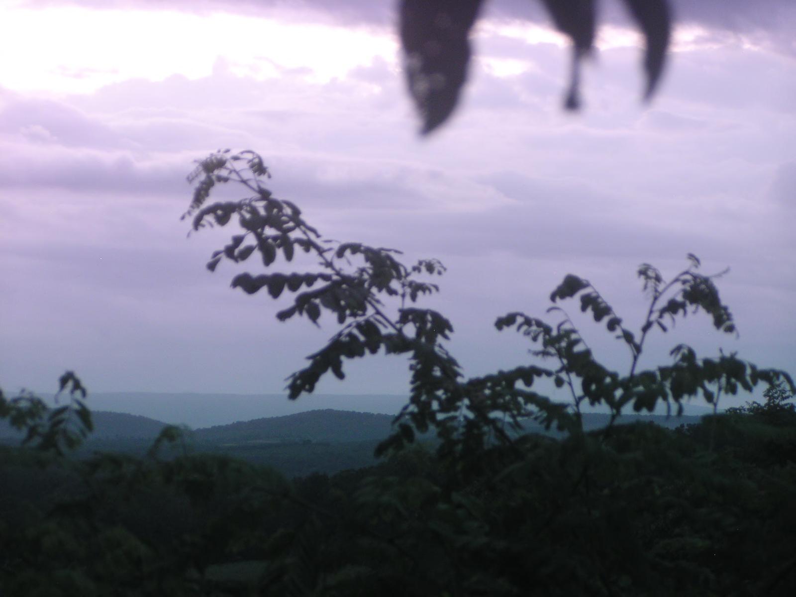 frostburg webcam